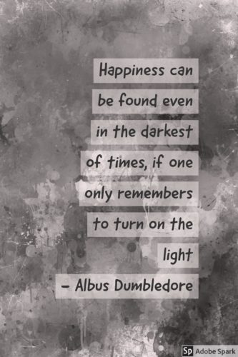 Light And Dark Quotes Beauteous 17 Quotes To Help Shine Light During Dark Times • My Cup Of Cocoa