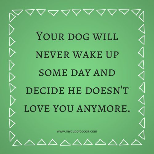 Quotes About Loving Someone Who Doesnt Love You Anymore: Four Legged Inspiration: Dog Quotes • My Cup Of Cocoa